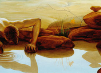 Simbolički prikaz Narcisa