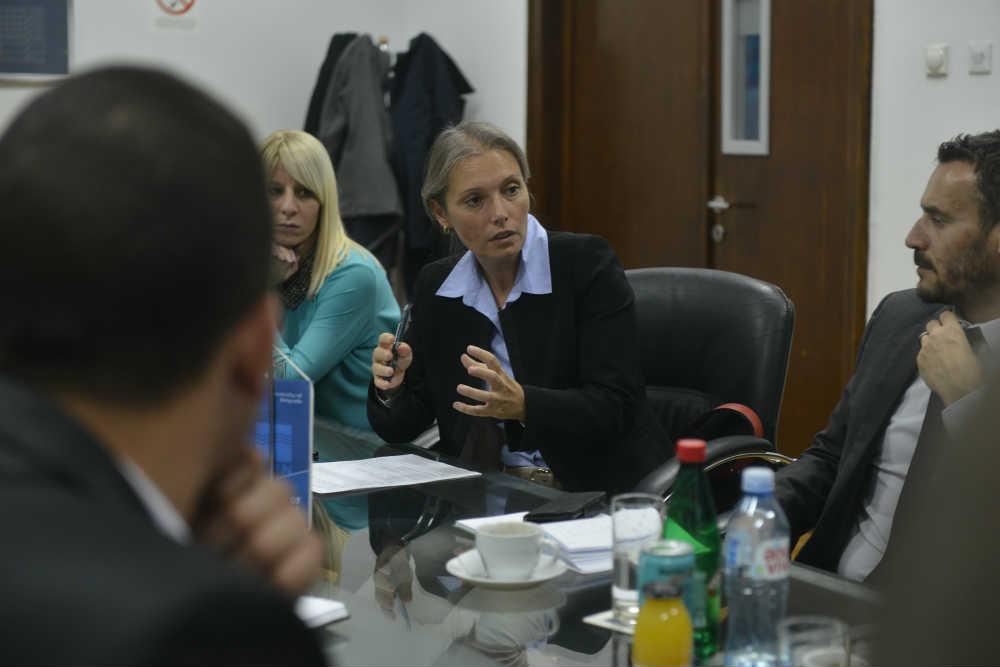 Predstavnica ambasade predstavlja rad ENA